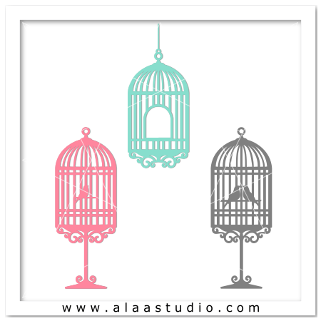 3 Bird cages set 1