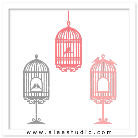3 Bird cages set  2
