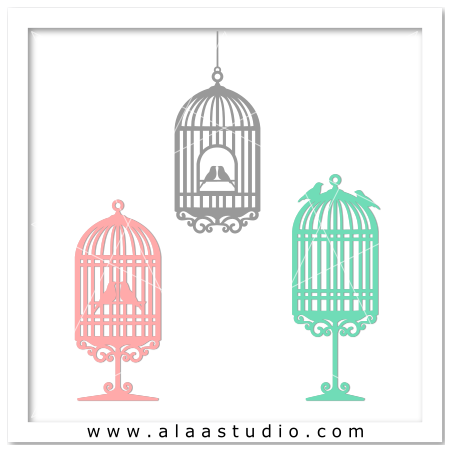 3 Bird cages set  3