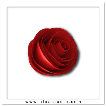 3D Spiral Rolled Rose