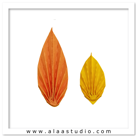 2 Pleated leaves
