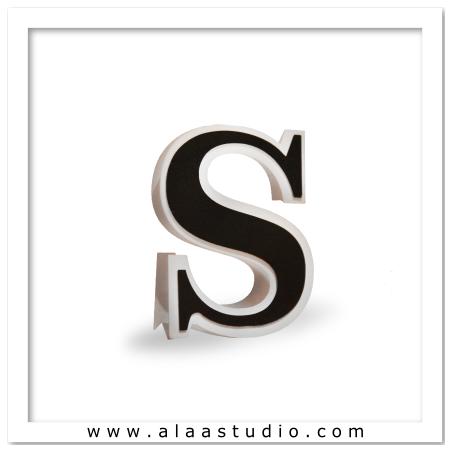 3D Flat fold letter S
