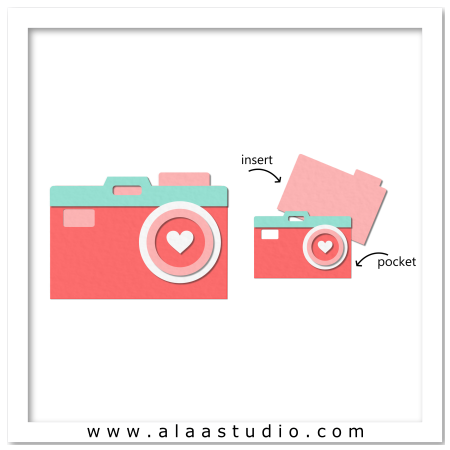 Camera pocket card